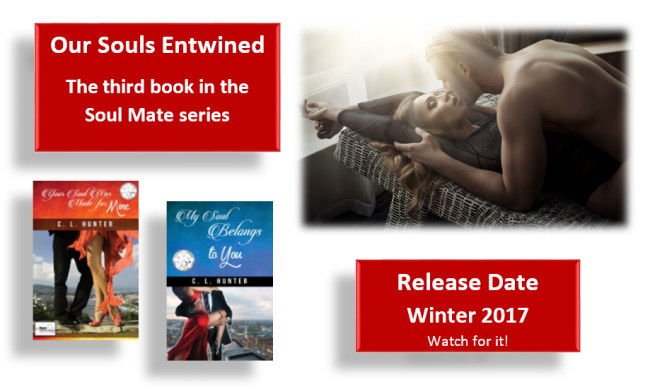 book-launch-spotlight-on-our-souls-entwined